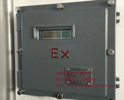 防爆型超声波流量计主机位置